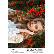 Colorline Standard Photo-Paper Luster 127mm x 65m, 250gsm für Fuji DX100/ DE100 / Epson D700