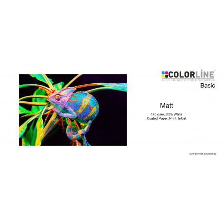 Colorline - Photo-Paper, 170gr, Matt, A4, 100 Blatt
